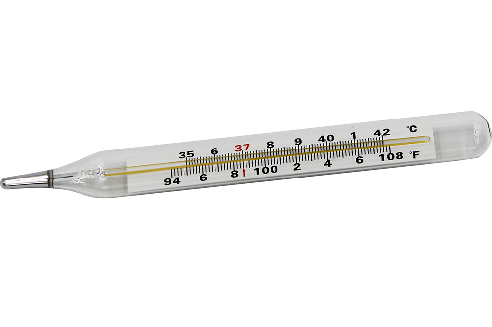 Clinical thermometer a41f8386e93b0